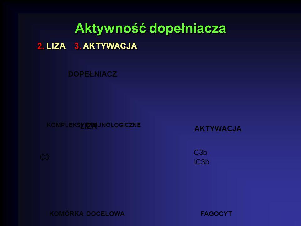 Aktywność dopełniacza 2.LIZA 3.