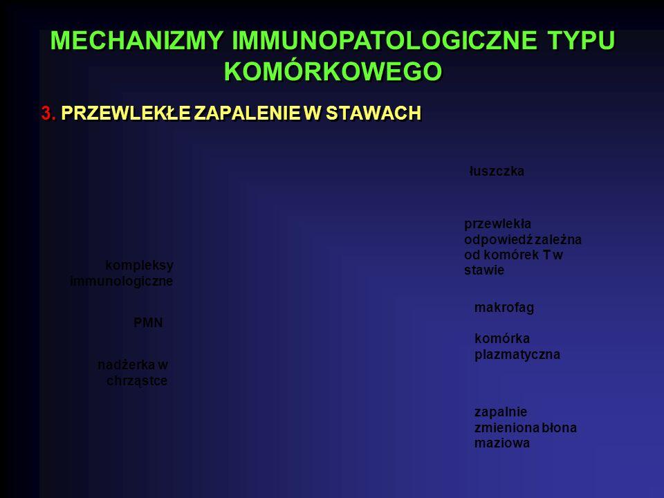 3. PRZEWLEKŁE ZAPALENIE W STAWACH MECHANIZMY IMMUNOPATOLOGICZNE TYPU KOMÓRKOWEGO kompleksy immunologiczne PMN nadżerka w chrząstce łuszczka przewlekła