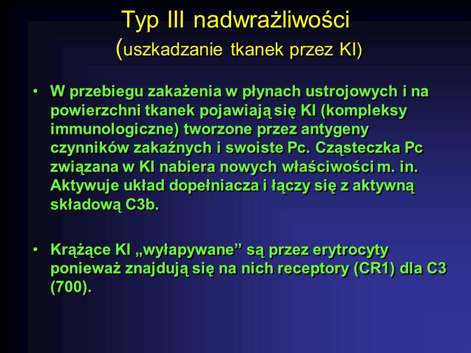 Typ III nadwrażliwości ( uszkadzanie tkanek przez KI) W przebiegu zakażenia w płynach ustrojowych i na powierzchni tkanek pojawiają się KI (kompleksy immunologiczne) tworzone przez antygeny czynników zakaźnych i swoiste Pc.