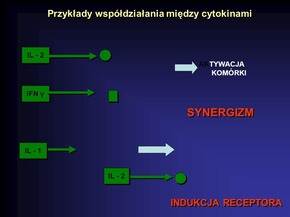 Przykłady współdziałania między cytokinami SYNERGIZM IL - 2 IFN γ AKTYWACJA KOMÓRKI IL - 1 IL - 2 INDUKCJA RECEPTORA