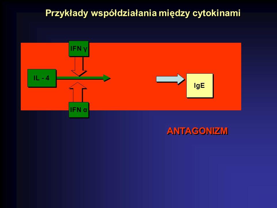 CHEMOTAKSJA mediatory zakażenia