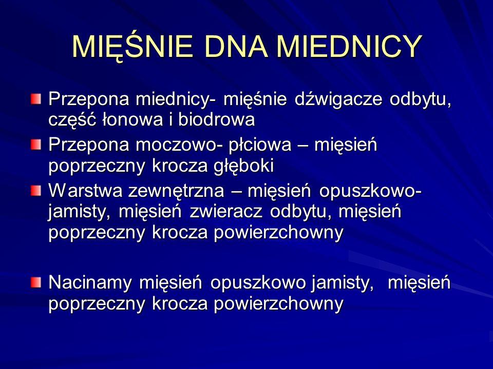 MIĘŚNIE DNA MIEDNICY Przepona miednicy- mięśnie dźwigacze odbytu, część łonowa i biodrowa Przepona moczowo- płciowa – mięsień poprzeczny krocza głębok