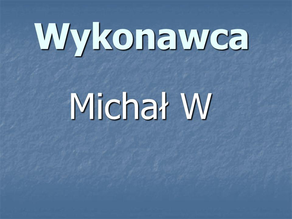 Wykonawca Michał W