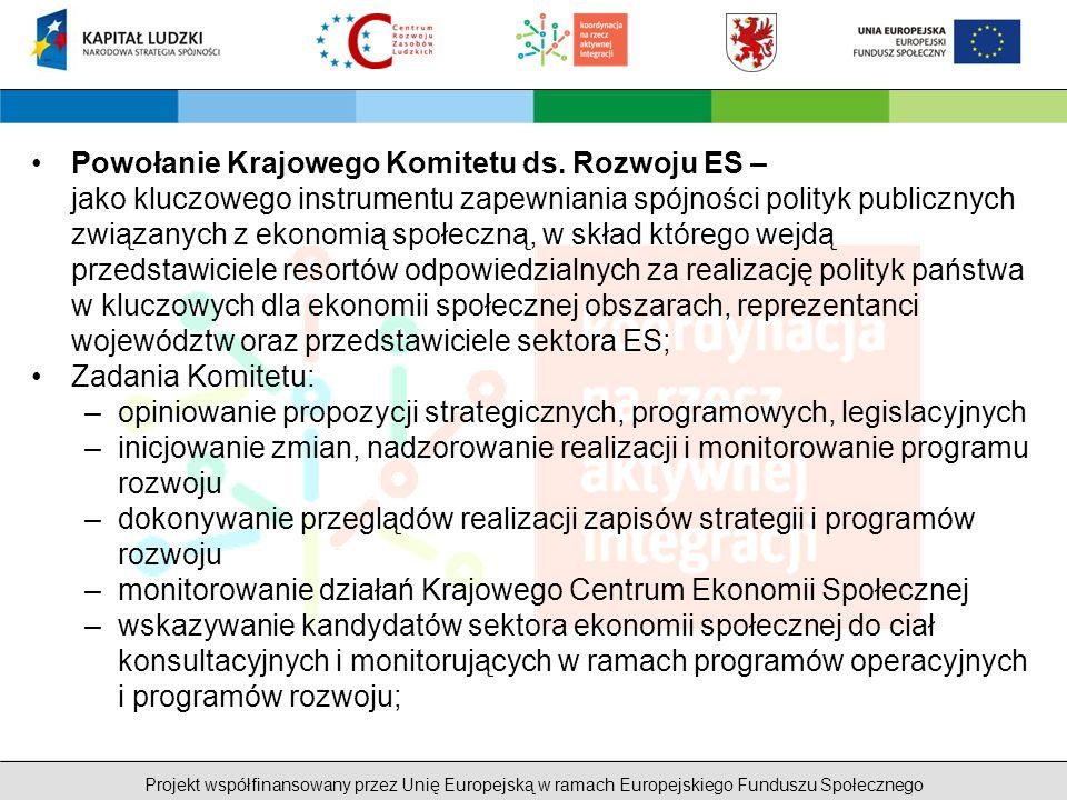 Projekt współfinansowany przez Unię Europejską w ramach Europejskiego Funduszu Społecznego Powołanie Krajowego Komitetu ds.