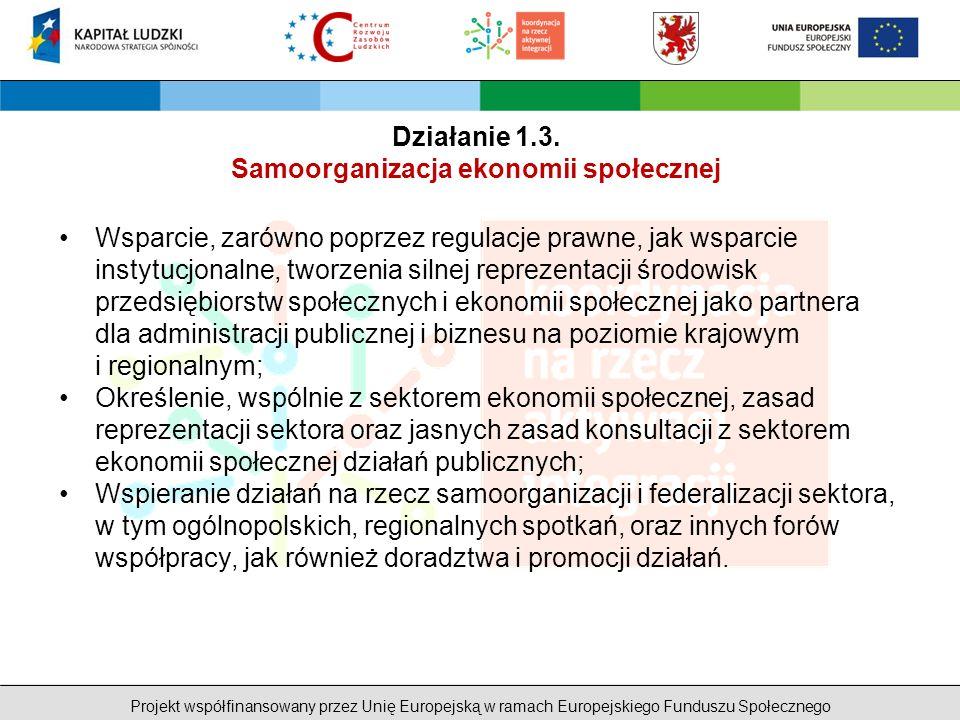 Projekt współfinansowany przez Unię Europejską w ramach Europejskiego Funduszu Społecznego Wsparcie, zarówno poprzez regulacje prawne, jak wsparcie instytucjonalne, tworzenia silnej reprezentacji środowisk przedsiębiorstw społecznych i ekonomii społecznej jako partnera dla administracji publicznej i biznesu na poziomie krajowym i regionalnym; Określenie, wspólnie z sektorem ekonomii społecznej, zasad reprezentacji sektora oraz jasnych zasad konsultacji z sektorem ekonomii społecznej działań publicznych; Wspieranie działań na rzecz samoorganizacji i federalizacji sektora, w tym ogólnopolskich, regionalnych spotkań, oraz innych forów współpracy, jak również doradztwa i promocji działań.