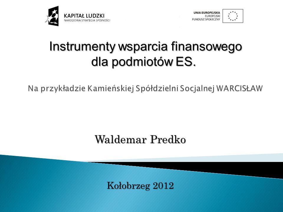 Instrumenty wsparcia finansowego Instrumenty wsparcia finansowego dla podmiotów ES.