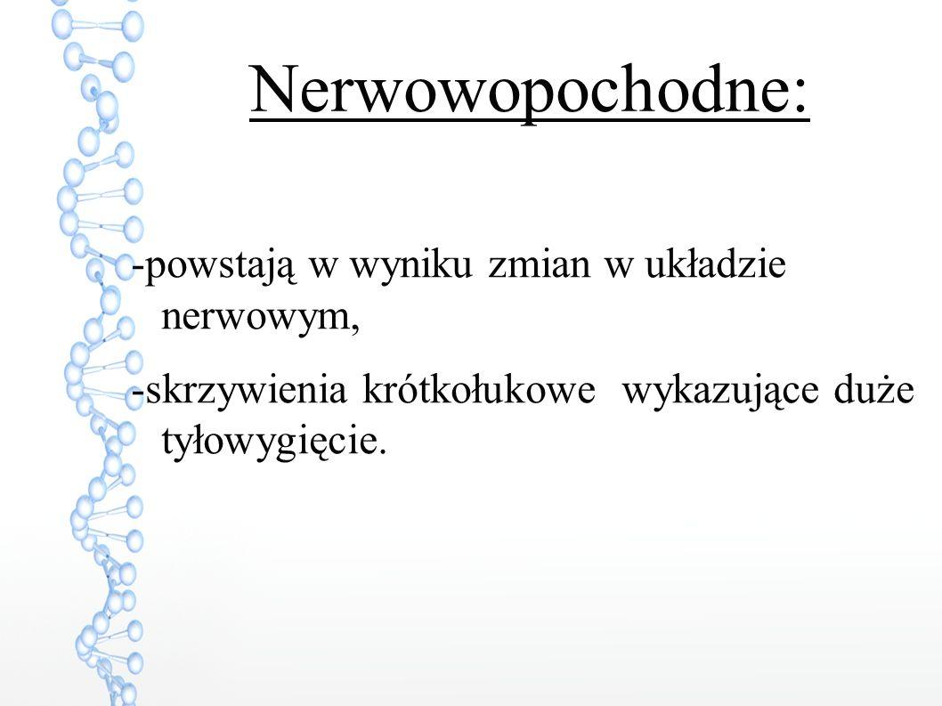 Nerwowopochodne: -powstają w wyniku zmian w układzie nerwowym, -skrzywienia krótkołukowe wykazujące duże tyłowygięcie.