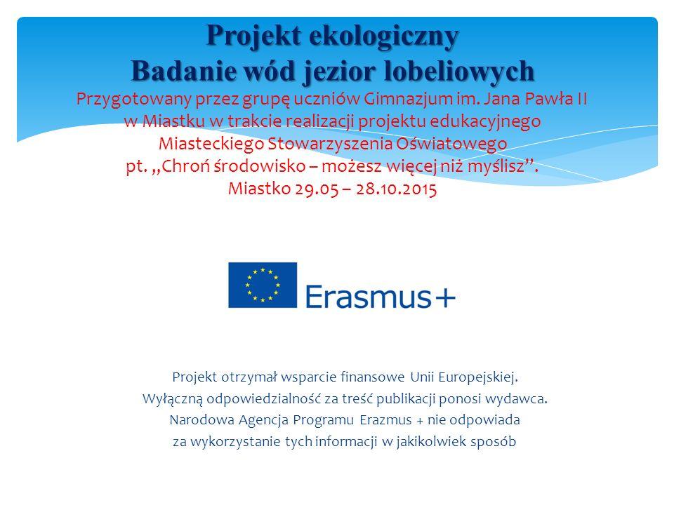 Projekt otrzymał wsparcie finansowe Unii Europejskiej.