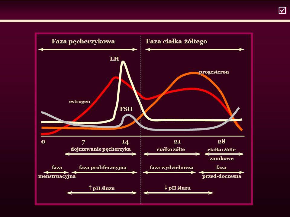   0 7 14 21 28 Faza pęcherzykowa Faza ciałka żółtego Faza pęcherzykowa Faza ciałka żółtego estrogen progesteron LH FSH dojrzewanie pęcherzyka dojrzewanie pęcherzyka ciałko żółte zanikowe zanikowe fazamenstruacyjna faza proliferacyjna faza wydzielnicza  pH śluzu  pH śluzu faza przed-doczesna