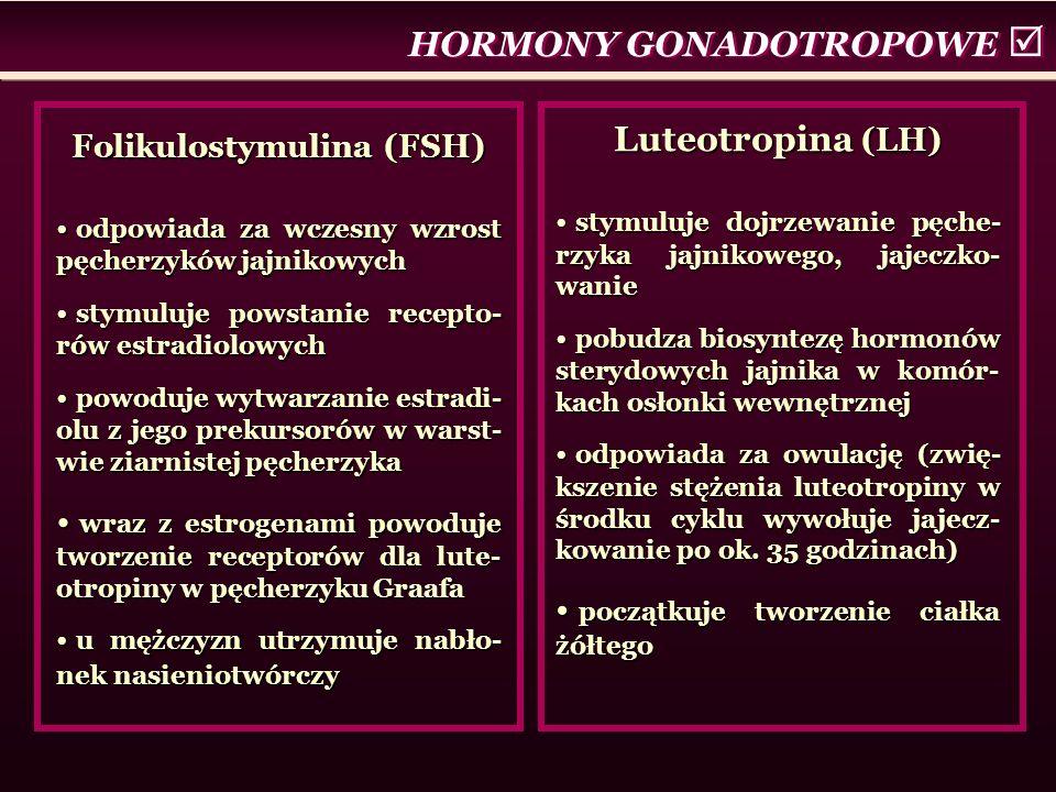 HORMONY GONADOTROPOWE  Folikulostymulina (FSH) odpowiada za wczesny wzrost pęcherzyków jajnikowych odpowiada za wczesny wzrost pęcherzyków jajnikowych stymuluje powstanie recepto- rów estradiolowych stymuluje powstanie recepto- rów estradiolowych powoduje wytwarzanie estradi- olu z jego prekursorów w warst- wie ziarnistej pęcherzyka powoduje wytwarzanie estradi- olu z jego prekursorów w warst- wie ziarnistej pęcherzyka wraz z estrogenami powoduje tworzenie receptorów dla lute- otropiny w pęcherzyku Graafa wraz z estrogenami powoduje tworzenie receptorów dla lute- otropiny w pęcherzyku Graafa u mężczyzn utrzymuje nabło- nek nasieniotwórczy u mężczyzn utrzymuje nabło- nek nasieniotwórczy Luteotropina (LH) stymuluje dojrzewanie pęche- rzyka jajnikowego, jajeczko- wanie stymuluje dojrzewanie pęche- rzyka jajnikowego, jajeczko- wanie pobudza biosyntezę hormonów sterydowych jajnika w komór- kach osłonki wewnętrznej pobudza biosyntezę hormonów sterydowych jajnika w komór- kach osłonki wewnętrznej odpowiada za owulację (zwię- kszenie stężenia luteotropiny w środku cyklu wywołuje jajecz- kowanie po ok.