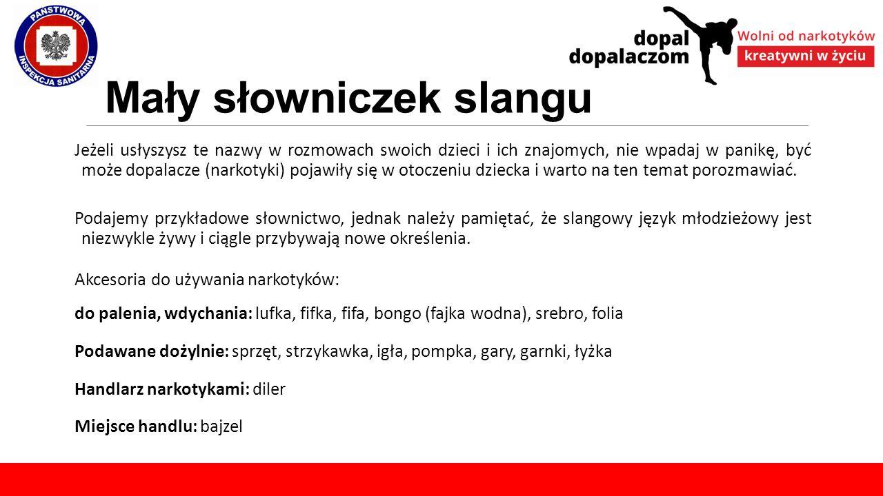 Mały słowniczek slangu Jeżeli usłyszysz te nazwy w rozmowach swoich dzieci i ich znajomych, nie wpadaj w panikę, być może dopalacze (narkotyki) pojawi
