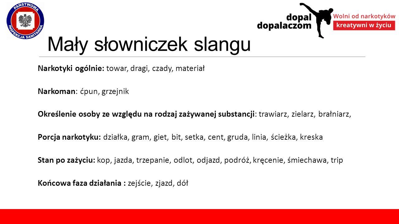 Mały słowniczek slangu Narkotyki ogólnie: towar, dragi, czady, materiał Narkoman: ćpun, grzejnik Określenie osoby ze względu na rodzaj zażywanej subst