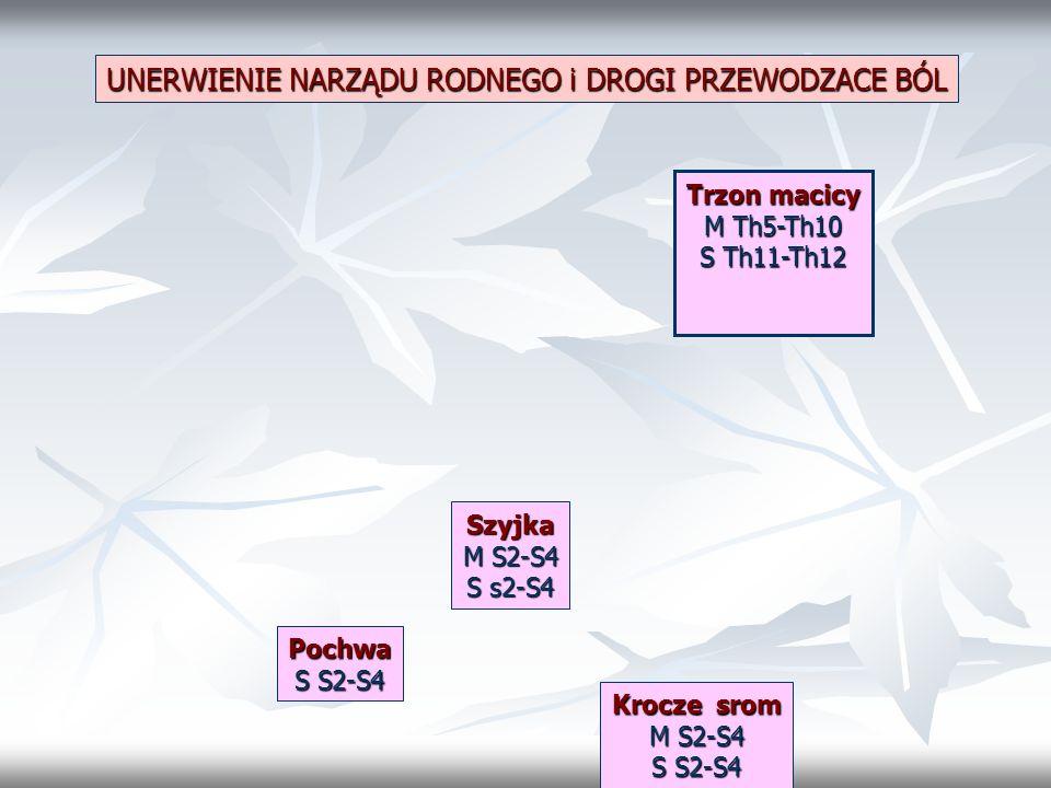 UNERWIENIE NARZĄDU RODNEGO i DROGI PRZEWODZACE BÓL Trzon macicy M Th5-Th10 S Th11-Th12 Szyjka M S2-S4 S s2-S4 Pochwa S S2-S4 Krocze srom M S2-S4 S S2-