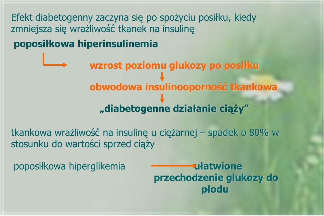 Efekt diabetogenny zaczyna się po spożyciu posiłku, kiedy zmniejsza się wrażliwość tkanek na insulinę poposiłkowa hiperinsulinemia wzrost poziomu gluk