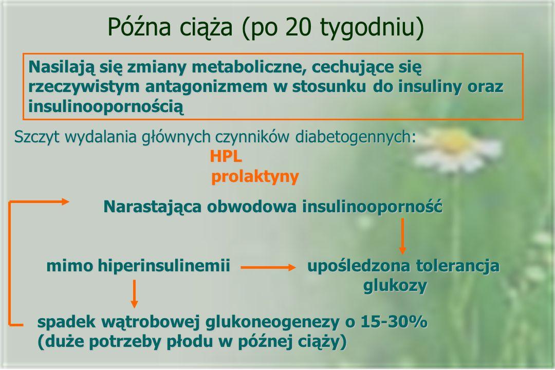 Późna ciąża (po 20 tygodniu) Nasilają się zmiany metaboliczne, cechujące się rzeczywistym antagonizmem w stosunku do insuliny oraz insulinoopornością Szczyt wydalania głównych czynników diabetogennych: HPL prolaktyny Narastająca obwodowa insulinooporność mimo hiperinsulinemii upośledzona tolerancja glukozy spadek wątrobowej glukoneogenezy o 15-30% (duże potrzeby płodu w późnej ciąży)