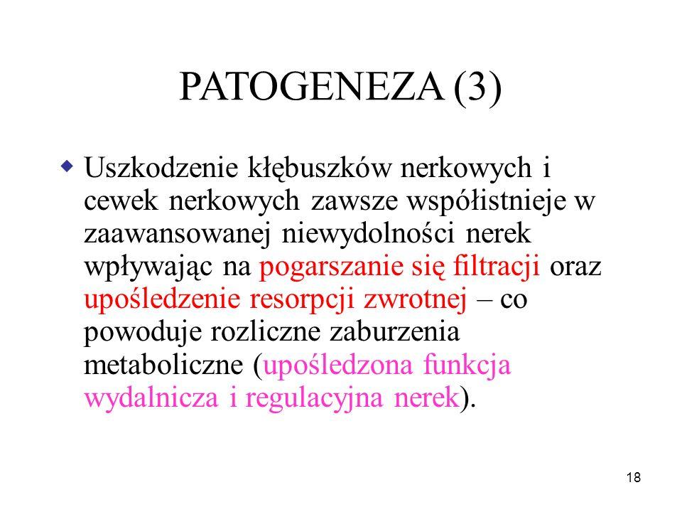 19 PATOGENEZA (4)  Upośledzona czynność wewnątrzwydzielnicza: erytropoetyna 1,25- dihydroksy D3 prostaglandyny czynnik natriuretyczny kininy  Upośledzona czynność metaboliczna: zmniejszenie glukoneogenezy wydłużenie T 0,5 insuliny