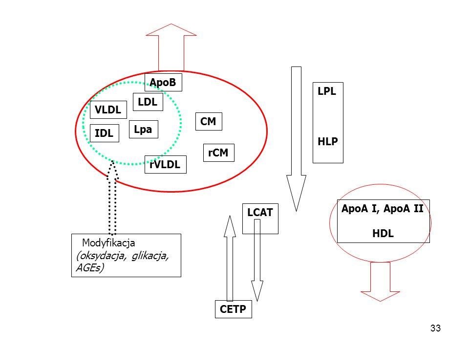 34 DYSLIPIDEMIA  TG;  CH(LDL)  HDL PNN, HD  CH(LDL);  TG  HDL ZN, DO, KTx