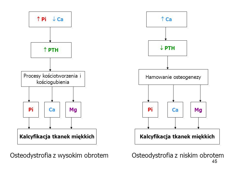 46  Pi  PTH  1,25(OH)2D3  Inhibitora kinazy p21  Proliferacji miocytów naczyniowych WAPNIENIE NACZYŃ Aktywacja genów swoistych dla osteoblastów  osteokalcyny Hiperlipidemia Utrata masy kostnej Napływ wapnia do komórek