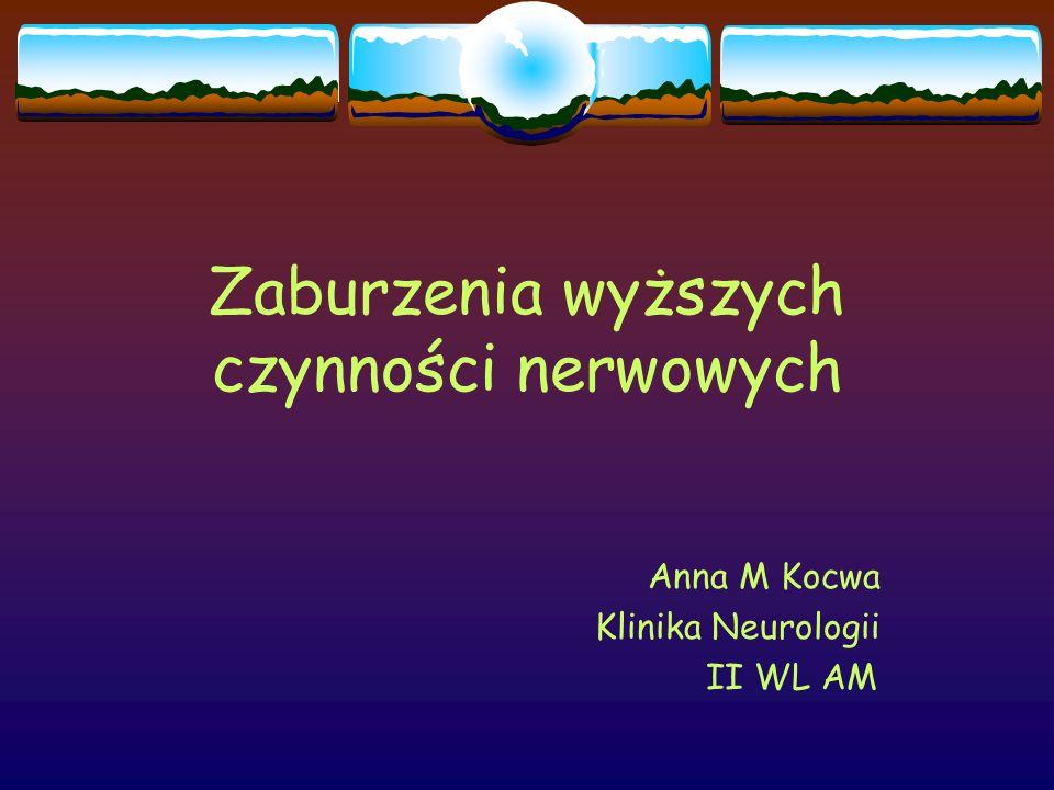 Zaburzenia wyższych czynności nerwowych Anna M Kocwa Klinika Neurologii II WL AM