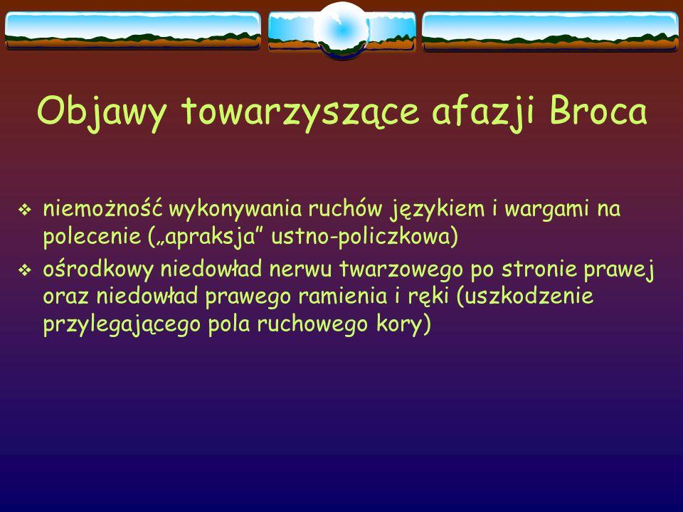 """Objawy towarzyszące afazji Broca  niemożność wykonywania ruchów językiem i wargami na polecenie (""""apraksja"""" ustno-policzkowa)  ośrodkowy niedowład n"""