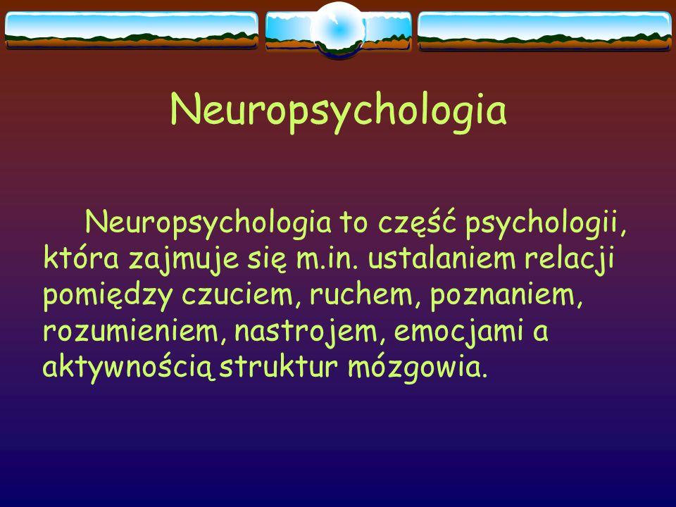 Neuropsychologia Neuropsychologia to część psychologii, która zajmuje się m.in. ustalaniem relacji pomiędzy czuciem, ruchem, poznaniem, rozumieniem, n