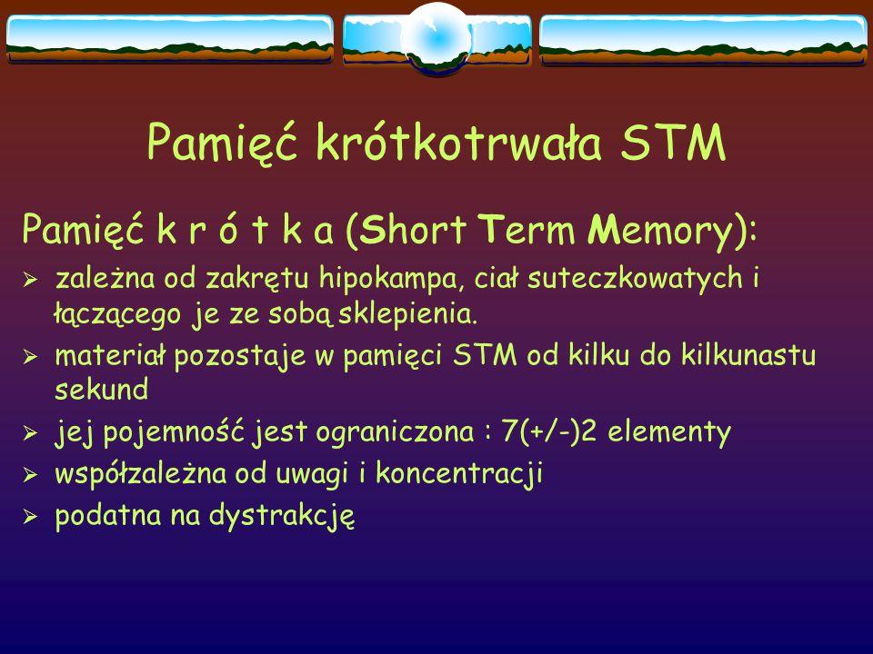 Pamięć krótkotrwała STM Pamięć k r ó t k a (Short Term Memory):  zależna od zakrętu hipokampa, ciał suteczkowatych i łączącego je ze sobą sklepienia.