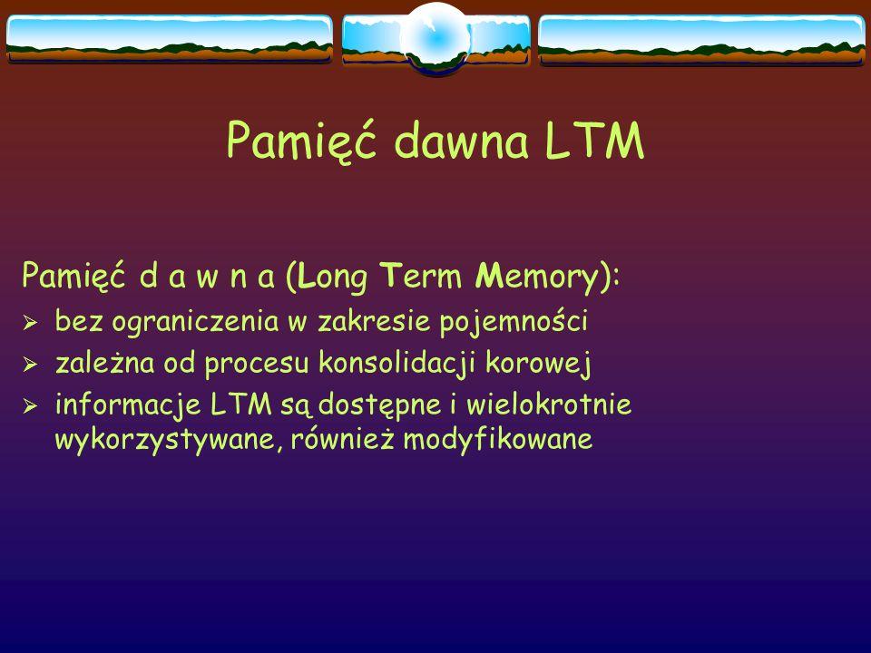 Pamięć dawna LTM Pamięć d a w n a (Long Term Memory):  bez ograniczenia w zakresie pojemności  zależna od procesu konsolidacji korowej  informacje