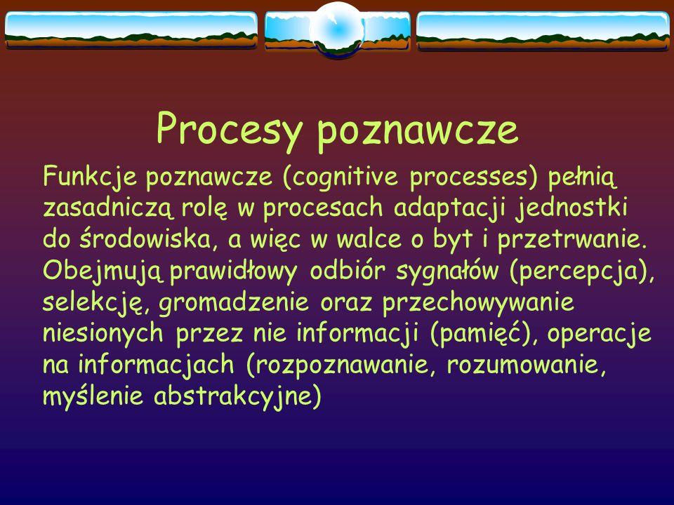 Procesy poznawcze Procesy poznawcze obejmują:  Procesy postrzegania i językowe  Pamięć  Myślenie  Funkcje wzrokowo-przestrzenne  Funkcje wykonawcze