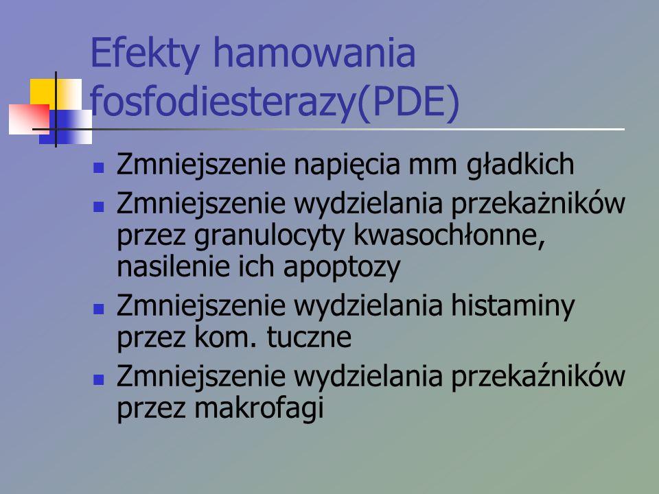 Efekty hamowania fosfodiesterazy(PDE) Zmniejszenie napięcia mm gładkich Zmniejszenie wydzielania przekażników przez granulocyty kwasochłonne, nasileni