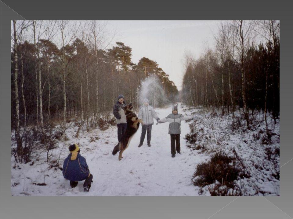  Wieś tą można nazwać oazą spokoju.Zimą zakochane pary mogą wybrać się na romantyczny spacer.