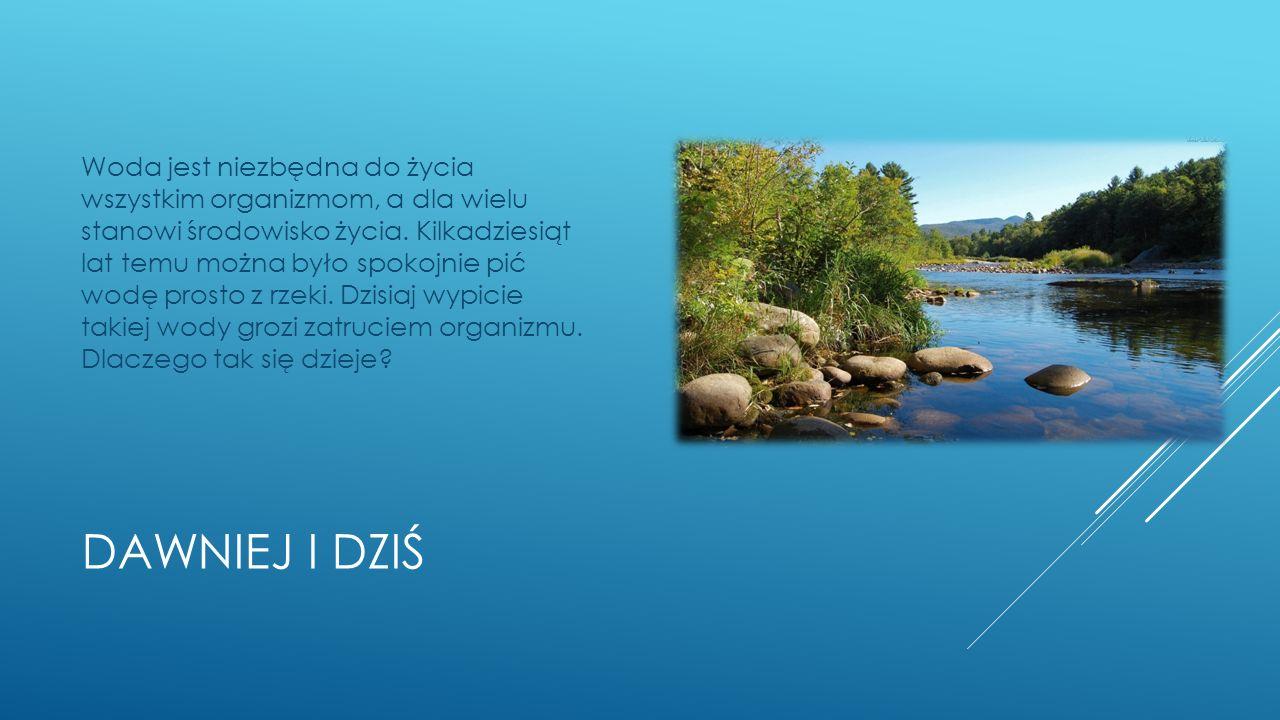 DAWNIEJ I DZIŚ Woda jest niezbędna do życia wszystkim organizmom, a dla wielu stanowi środowisko życia.