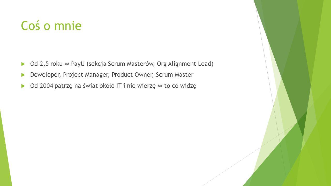 Cel prezentacji  Znaczenie szerszej perspektywy  Wzorce podpatrzone w organizacjach  Oczami Scrum Mastera