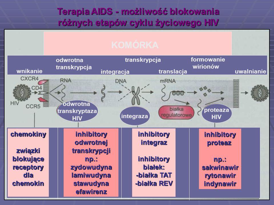 Terapia AIDS - możliwość blokowania różnych etapów cyklu życiowego HIV wnikanie odwrotna transkrypcja KOMÓRKA integracja transkrypcja translacja formo