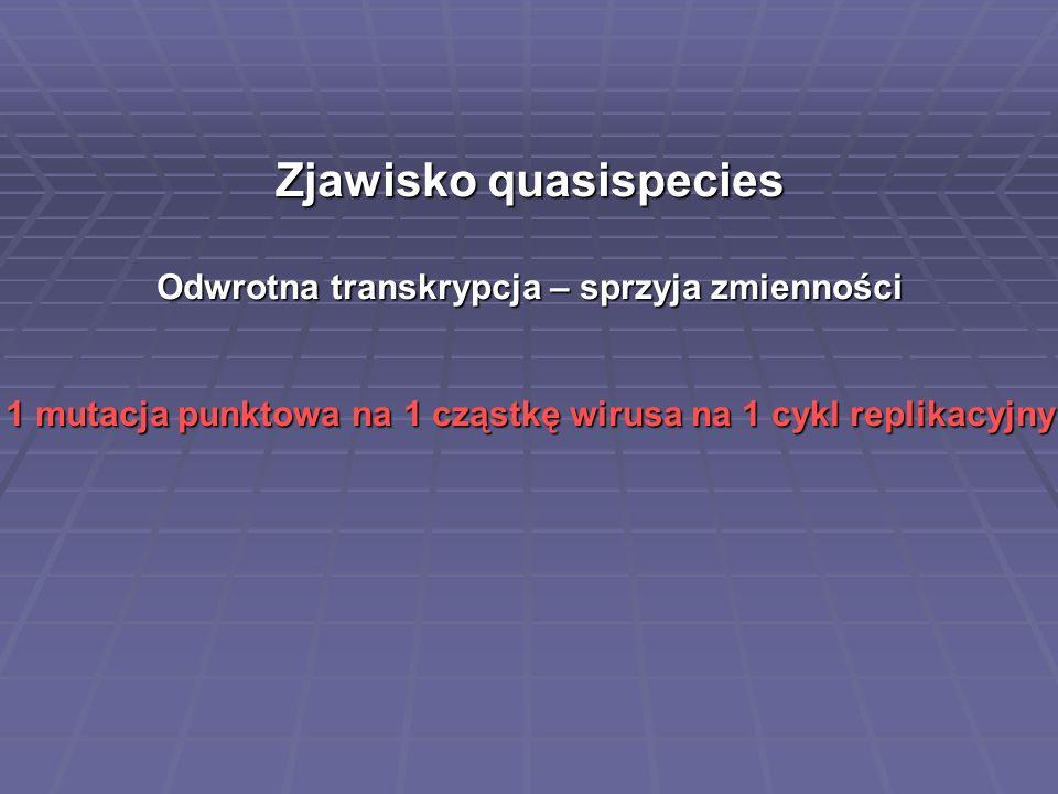 Zjawisko quasispecies Odwrotna transkrypcja – sprzyja zmienności 1 mutacja punktowa na 1 cząstkę wirusa na 1 cykl replikacyjny