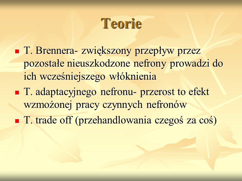 Teorie T. Brennera- zwiększony przepływ przez pozostałe nieuszkodzone nefrony prowadzi do ich wcześniejszego włóknienia T. Brennera- zwiększony przepł