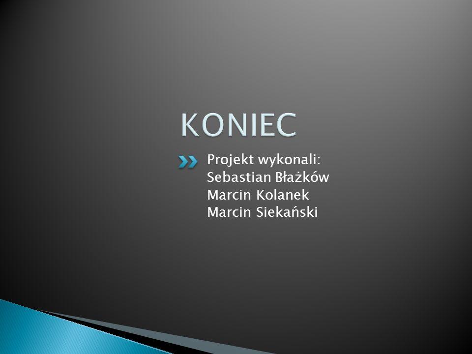 Projekt wykonali: Sebastian Błażków Marcin Kolanek Marcin Siekański