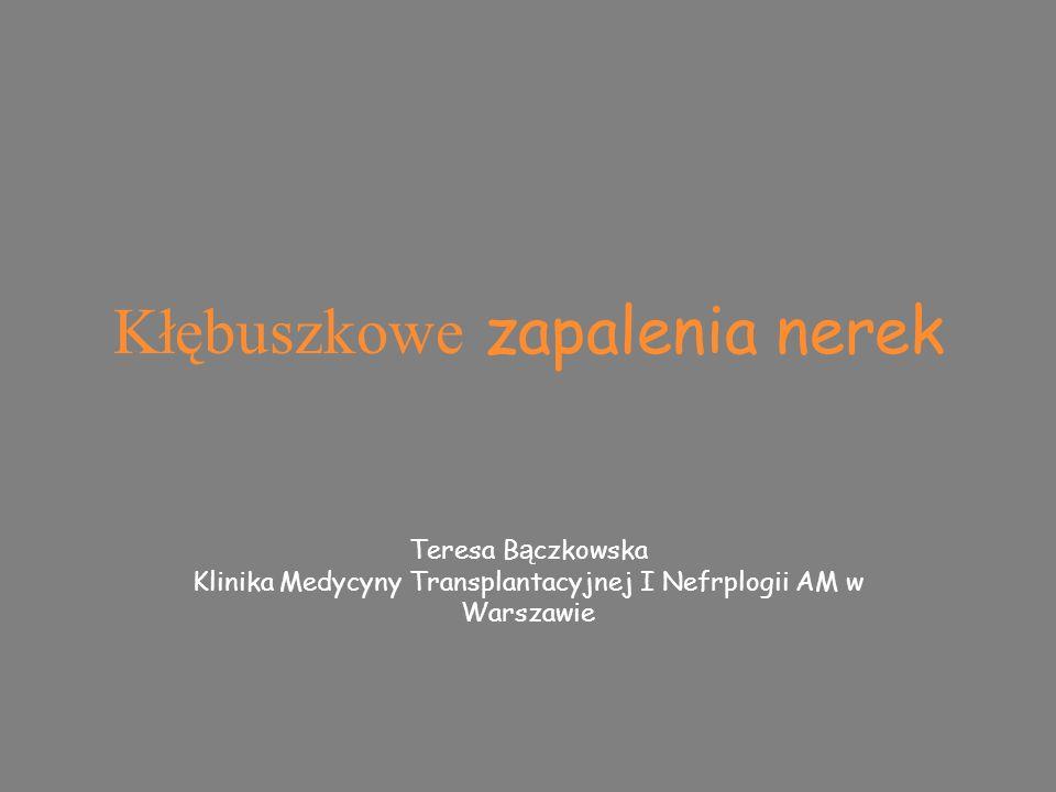Kłębuszkowe zapalenia nerek Teresa B ą czkowska Klinika Medycyny Transplantacyjnej I Nefrplogii AM w Warszawie Teresa B ą czkowska Klinika Medycyny Transplantacyjnej I Nefrplogii AM w Warszawie