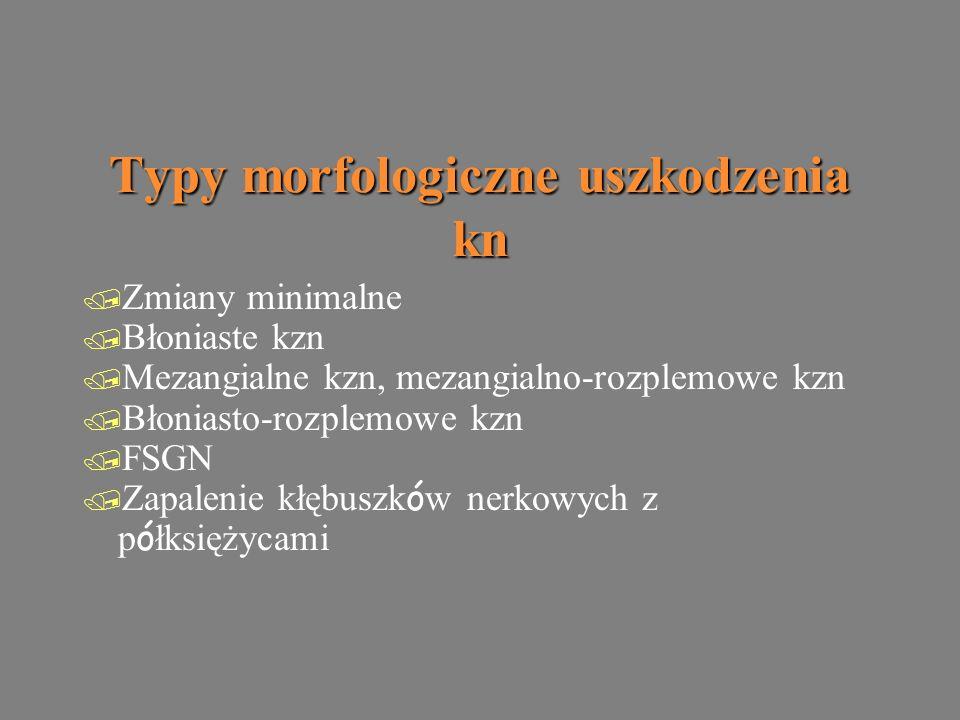 Typy morfologiczne uszkodzenia kn / Zmiany minimalne / Błoniaste kzn / Mezangialne kzn, mezangialno-rozplemowe kzn / Błoniasto-rozplemowe kzn / FSGN  Zapalenie kłębuszk ó w nerkowych z p ó łksiężycami / Zmiany minimalne / Błoniaste kzn / Mezangialne kzn, mezangialno-rozplemowe kzn / Błoniasto-rozplemowe kzn / FSGN  Zapalenie kłębuszk ó w nerkowych z p ó łksiężycami