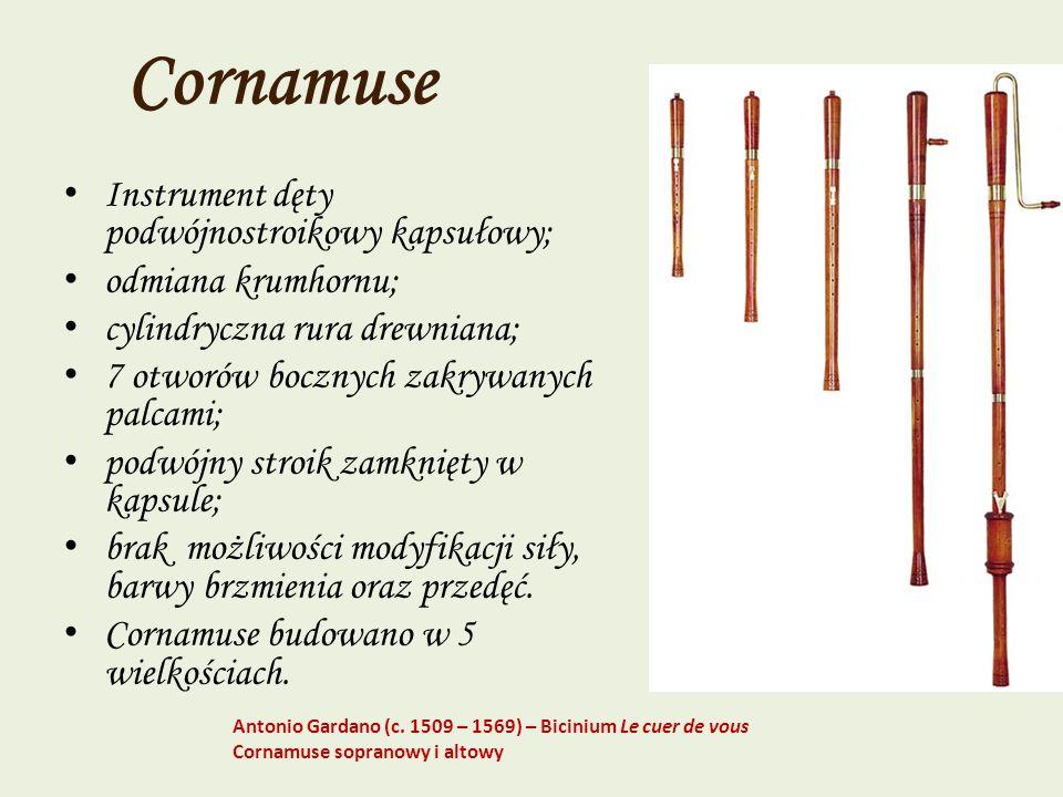 Cornamuse Instrument dęty podwójnostroikowy kapsułowy; odmiana krumhornu; cylindryczna rura drewniana; 7 otworów bocznych zakrywanych palcami; podwójn