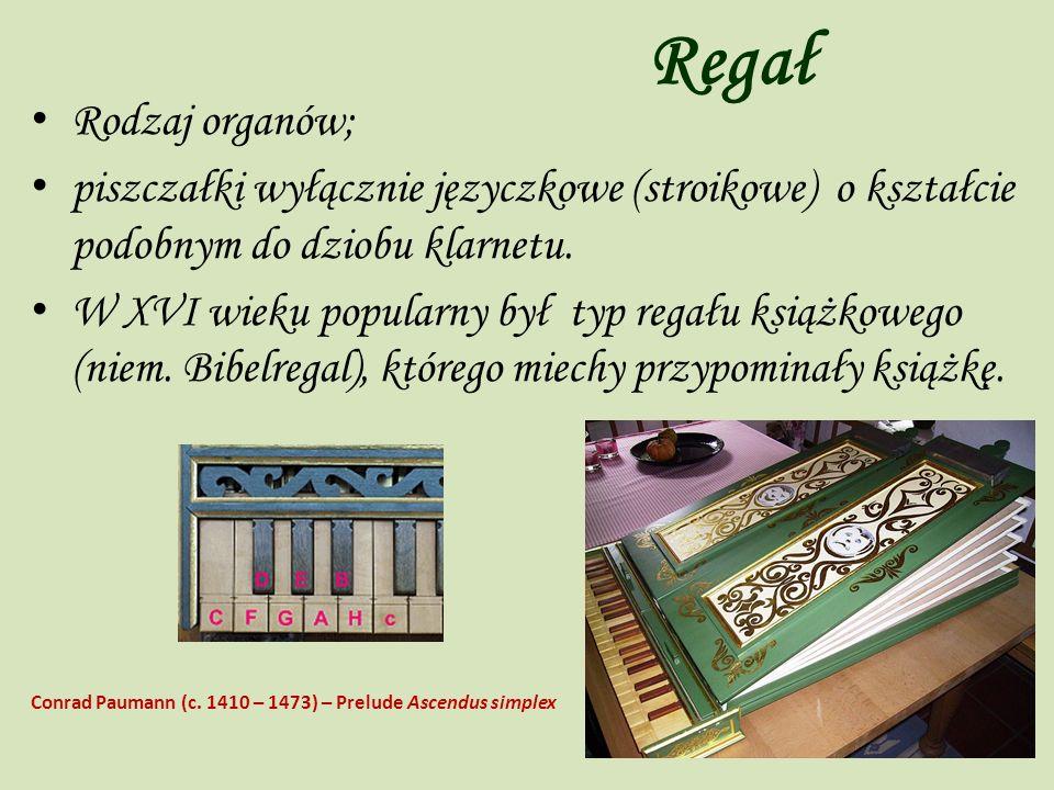 Regał Rodzaj organów; piszczałki wyłącznie języczkowe (stroikowe) o kształcie podobnym do dziobu klarnetu. W XVI wieku popularny był typ regału książk