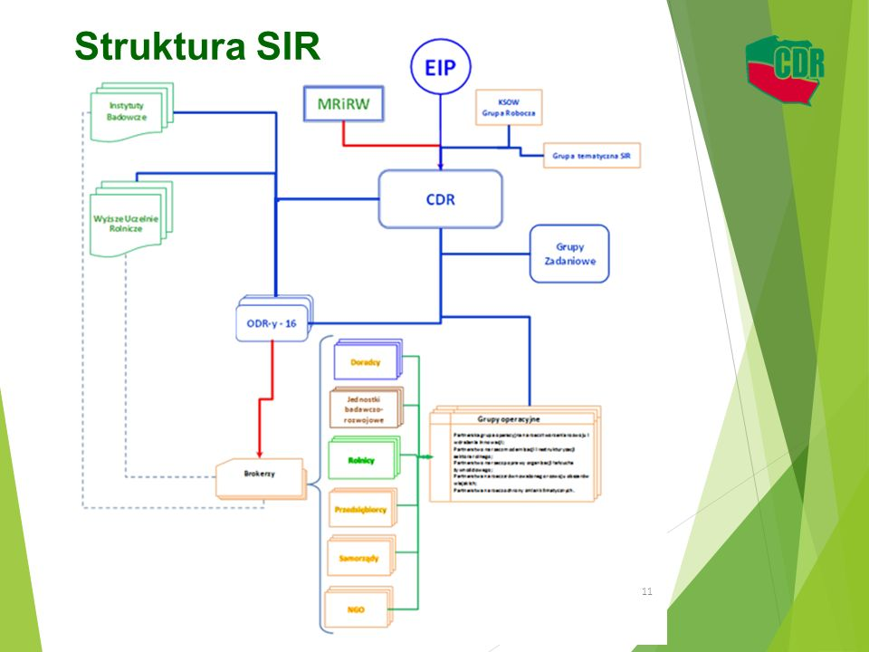 Struktura SIR 11