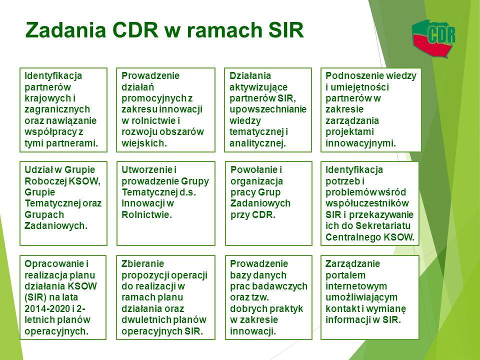Zadania CDR w ramach SIR 12 Identyfikacja partnerów krajowych i zagranicznych oraz nawiązanie współpracy z tymi partnerami. Identyfikacja potrzeb i pr