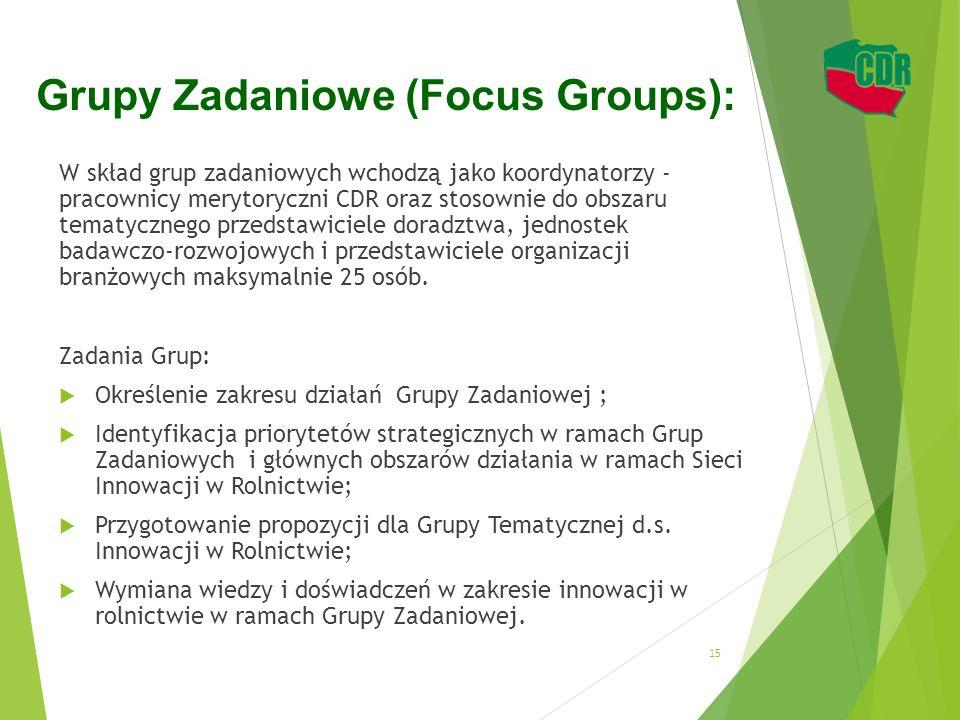 Grupy Zadaniowe (Focus Groups): W skład grup zadaniowych wchodzą jako koordynatorzy - pracownicy merytoryczni CDR oraz stosownie do obszaru tematyczne
