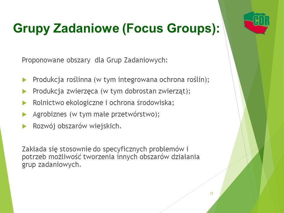 Grupy Zadaniowe (Focus Groups): Proponowane obszary dla Grup Zadaniowych:  Produkcja roślinna (w tym integrowana ochrona roślin);  Produkcja zwierzę