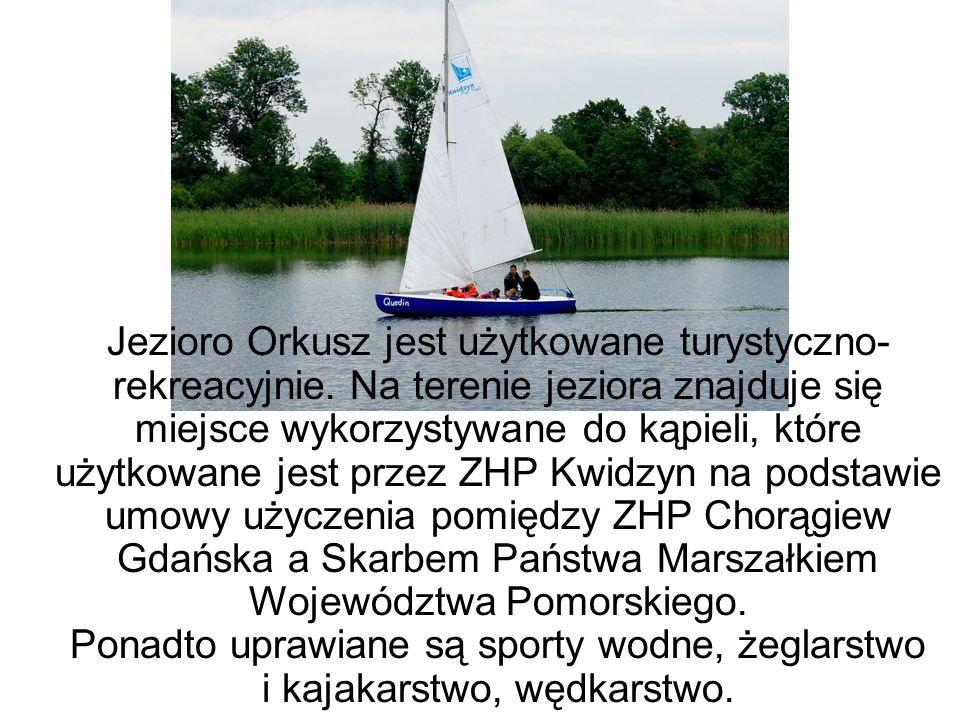 W pobliżu jeziora znajduje się Harcerskie Centrum Integracji Dzieci i Młodzieży ZHP Kwidzyn wykorzystywane głównie do organizacji letniego wypoczynku dzieci i młodzieży oraz do prowadzenia całorocznych zajęć i biwaków.