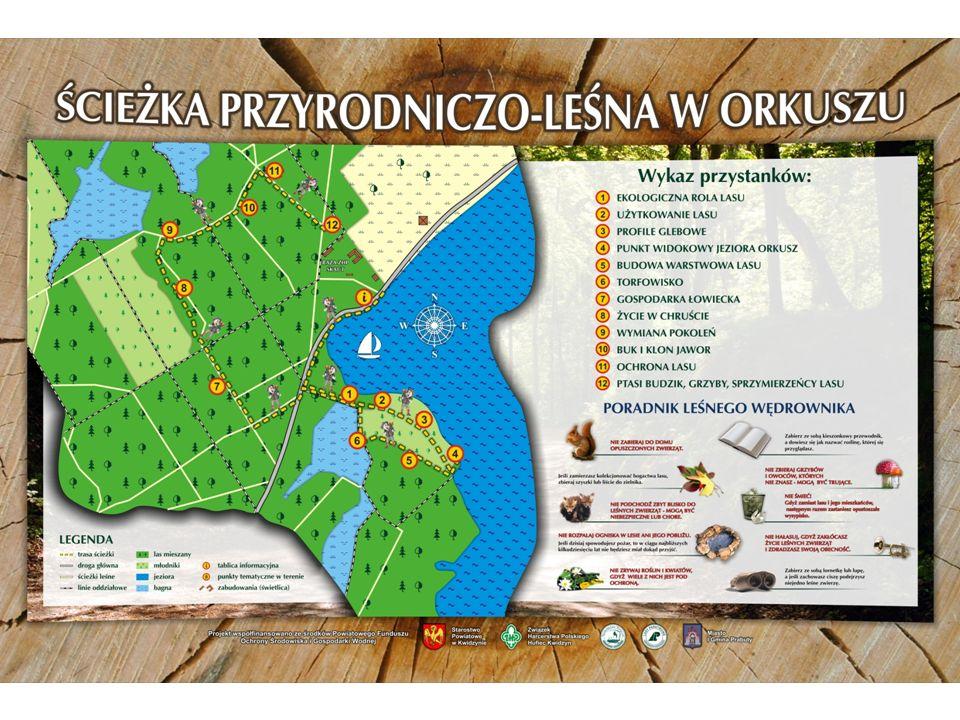 Jezioro jest dzierżawione przez WODNĄ FARMĘ, spółkę z Iławy, która prowadzi zarybianie i zajmuje się ochroną rybacką.