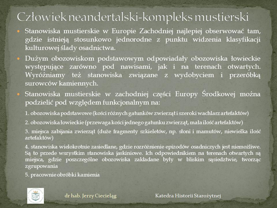 Stanowiska mustierskie w Europie Zachodniej najlepiej obserwować tam, gdzie istnieją stosunkowo jednorodne z punktu widzenia klasyfikacji kulturowej ś