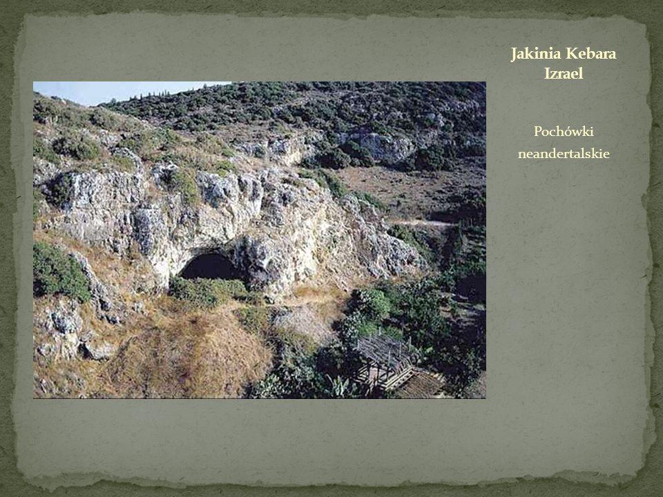 Pochówki neandertalskie