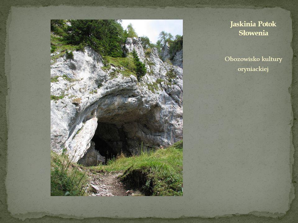 Obozowisko kultury oryniackiej