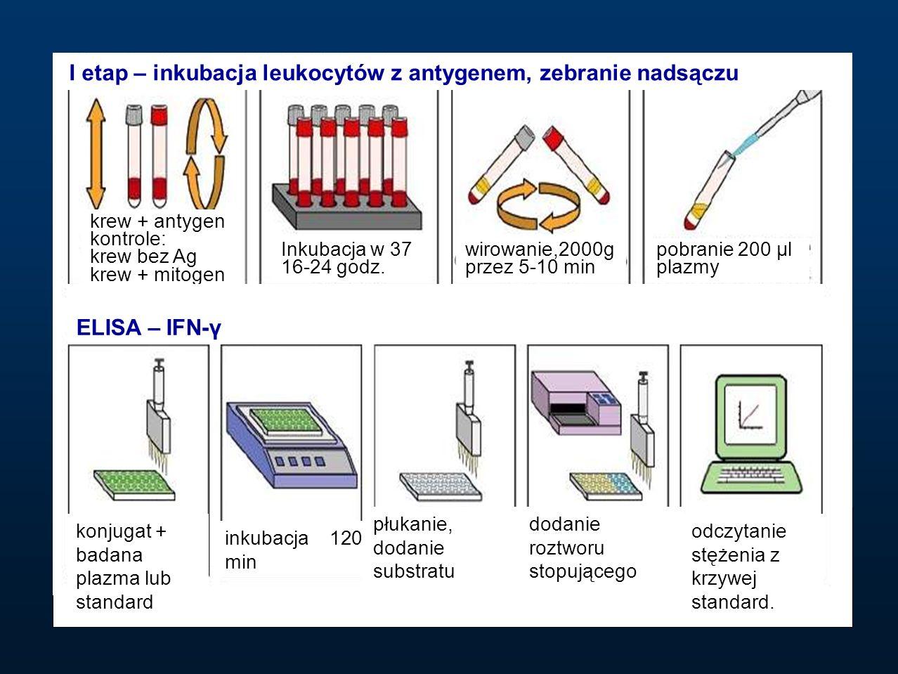 I etap – inkubacja leukocytów z antygenem, zebranie nadsączu ELISA – IFN-γ krew + antygen kontrole: krew bez Ag krew + mitogen Inkubacja w 37 16-24 go
